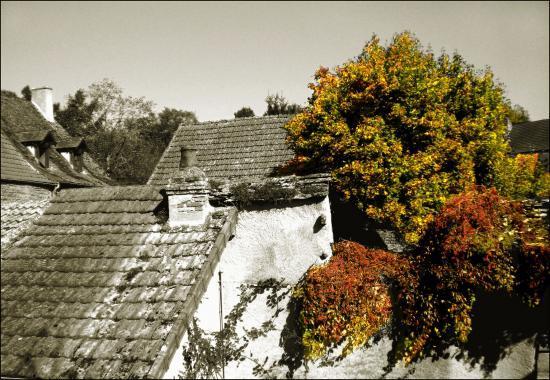 toitures d'automne